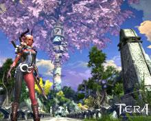 FanSite Kit — графика для создания фан-сайта посвященного игре TERA